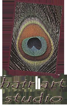 Hotheads hair extensions cincinnati oh hair art studio pmusecretfo Choice Image